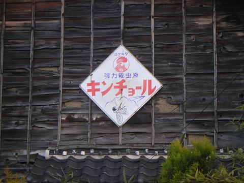 羽生市 (3).JPG